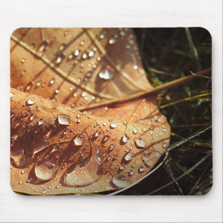 Wet Autumn Leaf - Mousepad