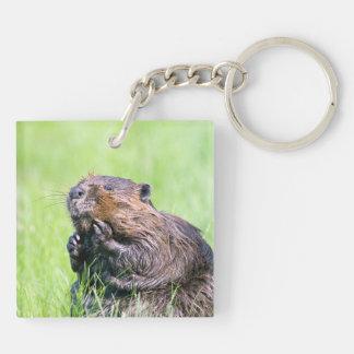 Wet Beaver Double-Sided Square Acrylic Key Ring