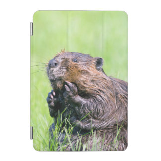 Wet Beaver iPad Mini Cover