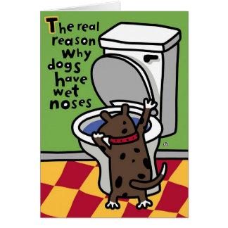 wet doggie nose card