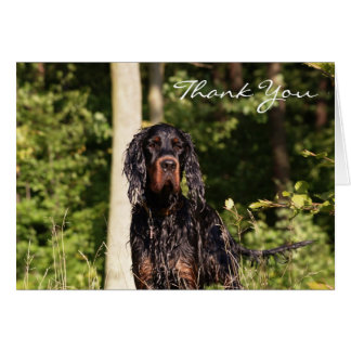 Wet Gordon Setter Thank You Note Cards