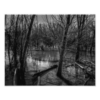 Wet Lands Photo Print
