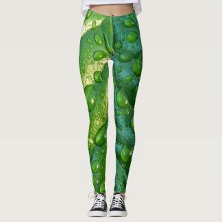 wet leaf leggings