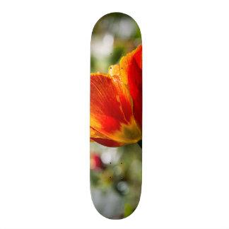 Wet Orange and Yellow Tulip Skateboard