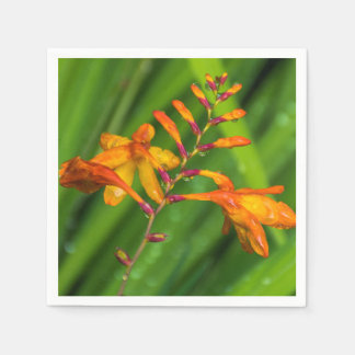 Wet orange flower paper napkins