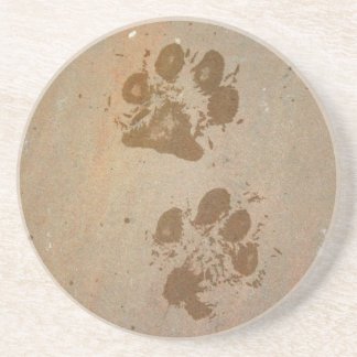 Wet Paw Prints Coaster