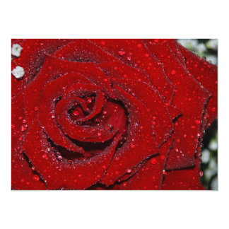 Wet Rose 14 Cm X 19 Cm Invitation Card