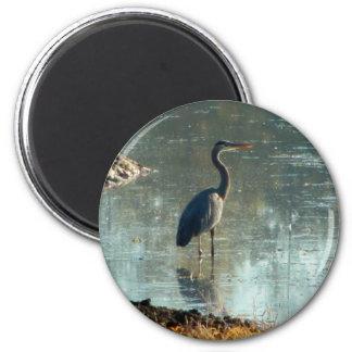 Wetland Crane 6 Cm Round Magnet