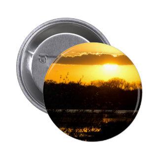 Wetland Gold Pins