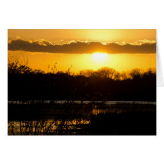 Wetland Gold Greeting Card