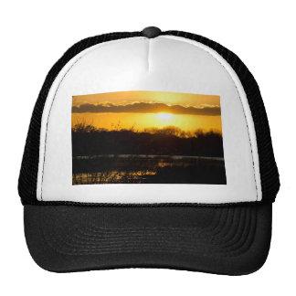 Wetland Gold Mesh Hat