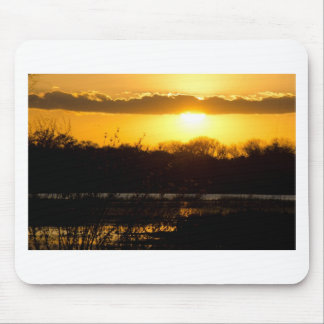 Wetland Gold Mouse Pads