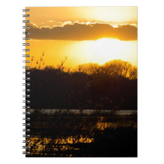 Wetland Gold Spiral Note Book