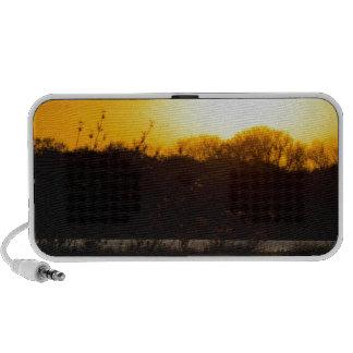 Wetland Gold Speaker