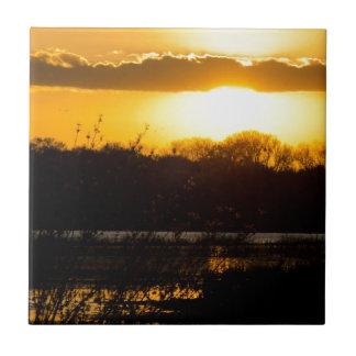 Wetland Gold Ceramic Tiles