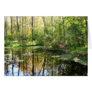 Wetland Note Card