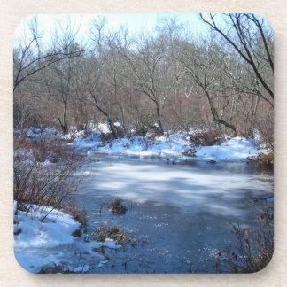 Wetland Ponds in Winter Beverage Coasters