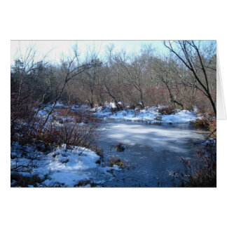 Wetland Ponds In Winter Greeting Card