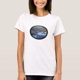 Wetland Ponds in Winter T-Shirt