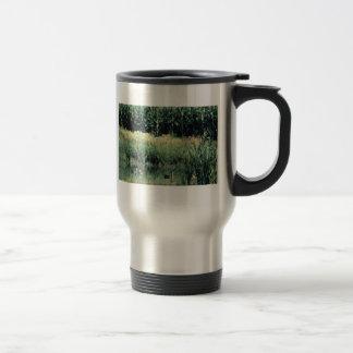 Wetland, Pothole Mugs