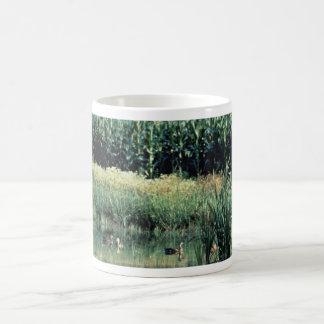 Wetland, Pothole Mug