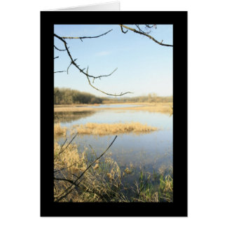 Wetland Wonderland Card