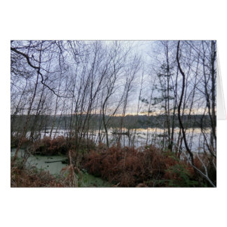 Wetlands and Blakemere Moss in Delamere Forest Greeting Card