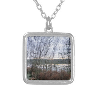 Wetlands and Blakemere Moss in Delamere Forest Necklace