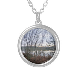 Wetlands and Blakemere Moss in Delamere Forest Pendant