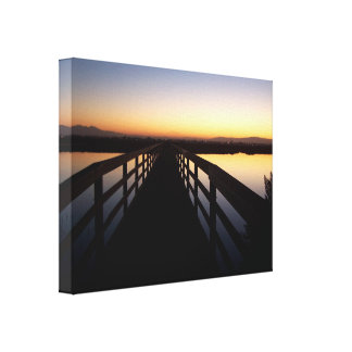 Wetlands Birds Wildlife Animals Photography Gallery Wrapped Canvas