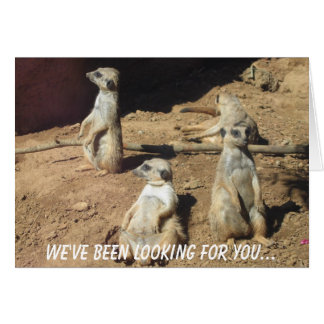 We've been looking for you... greeting card