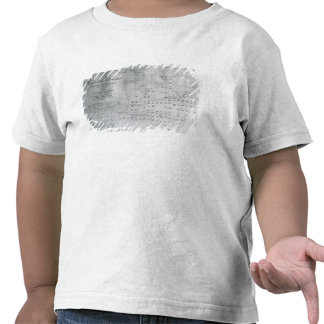 Whale Chart of the North Pacific, 1851 Tshirt