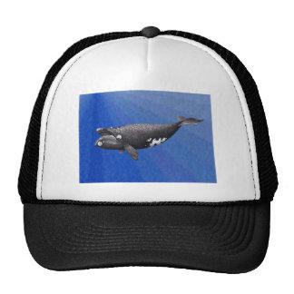 whale-clip-art-2 mesh hat