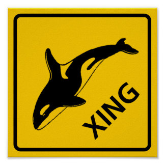 Whale Crossing Highway Sign Poster