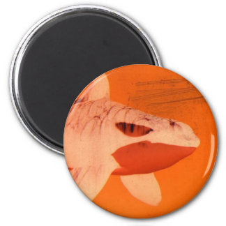 whale maget 6 cm round magnet