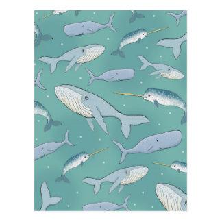 Whale Parade Pattern Postcard