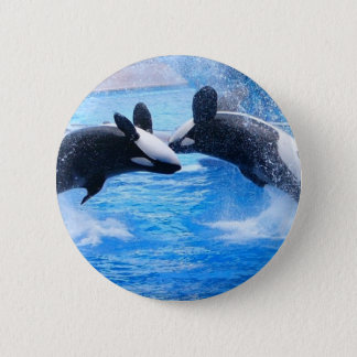 Whale Photo Round Button
