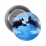 Whale Photo Round Button