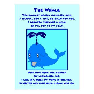 Whale poem postcard