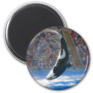 Whale Refrigerator Magnets