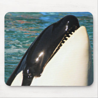 Whale Saying Hello Mouse Mat