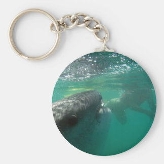 Whale Shark and Swimmer Basic Round Button Key Ring