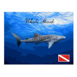 Whale Shark Postcard Cartão Postal