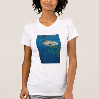 Whale Shark with fish, Indonesia T-Shirt