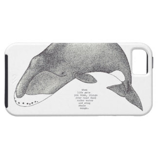 """whale songs"" iPhone 5 cover"