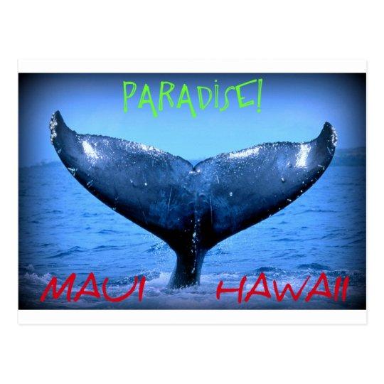 WHALE TAIL MAUI PARADISE HAWAII POSTCARD