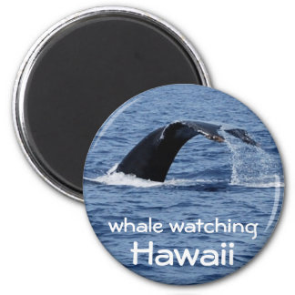 Whale Watching, Hawaii 6 Cm Round Magnet
