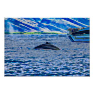 Whale Watching in Hawaii off of Maui Poster