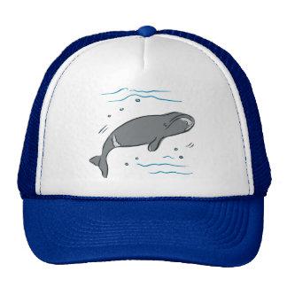 Whale Whales Marine Mammals Cetacea Ocean Art Cap