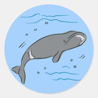 Whale Whales Marine Mammals Cetacea Ocean Art Round Stickers